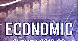 Vision IAS Economic Survey 2020 Summary Volume 1 and 2 PDF